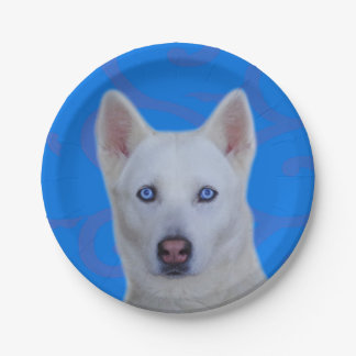 White Siberian Husky Paper Plate 7 Inch Paper Plate