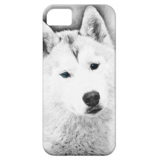 White Siberian Husky w/ Blue Eyes Fine Art Sketch iPhone 5 Cases