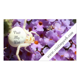 White Smiling Spider Visit My Web Pack Of Standard Business Cards