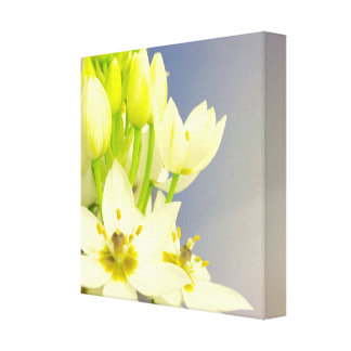 White Snow Bells Canvas Stretched Canvas Print