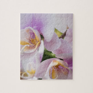 White Soft Orchids Blooming Jigsaw Puzzle
