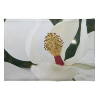 White southern magnolia flower blossom placemats