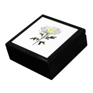 White Spider Mum Gift Box