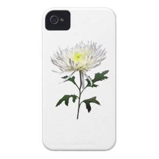 White Spider Mum iPhone 4 Case