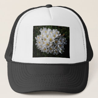 WHITE SPRING CROCUSES Cap