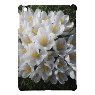 WHITE SPRING CROCUSES iPad Case