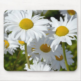White spring daisies mouse pad