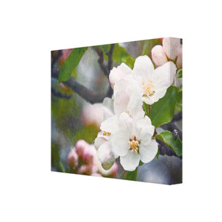 White Spring Easter Flowers Canvas Canvas Print