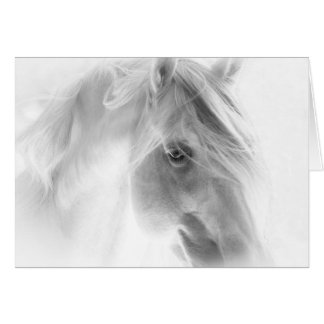 White Stallion Glows - Horse Greeting Card