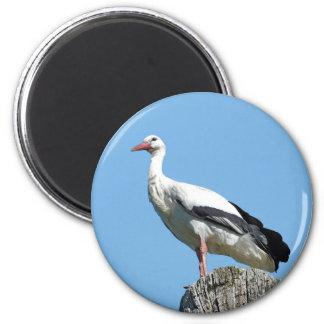White Stork 2.0 (Storch) 6 Cm Round Magnet