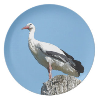 White Stork 2.0 (Storch) Plates
