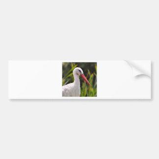 White stork among vegetation bumper sticker