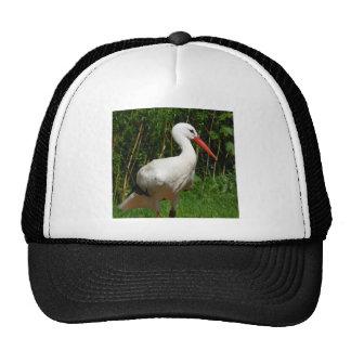 White Stork Bird Trucker Hats