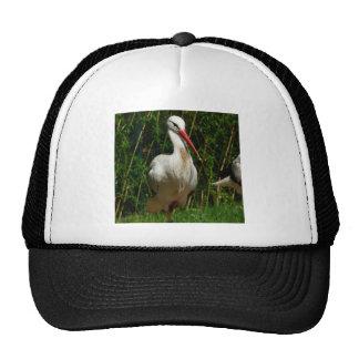 White Stork Mesh Hat