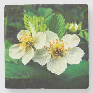 White Strawberry Flowers Stone Coaster