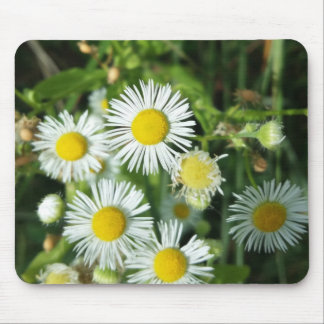 White summer flower mouse pad