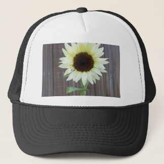 White sunflower against a weathered fence trucker hat