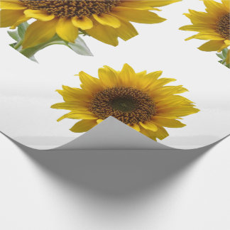 WHite sunflower wall paper for Her