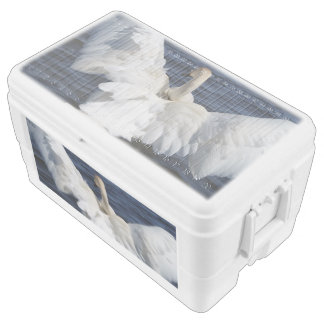 White Swan 48 Quart Igloo Ice Chest