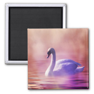 White Swan floating on a misty lake Square Magnet