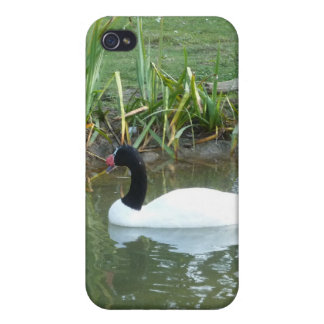 White Swan Cover For iPhone 4