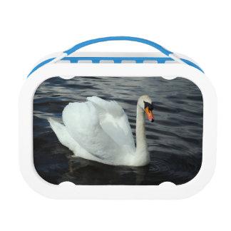 White Swan Lunch Box