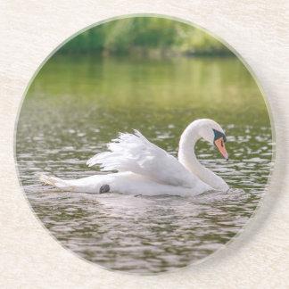 White swan on a lake coaster
