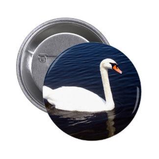 White swan on still waters 6 cm round badge