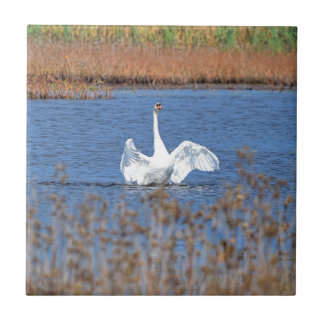 White Swan Solo.JPG Ceramic Tile