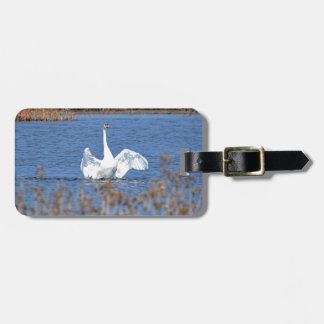 White Swan Solo.JPG Luggage Tag