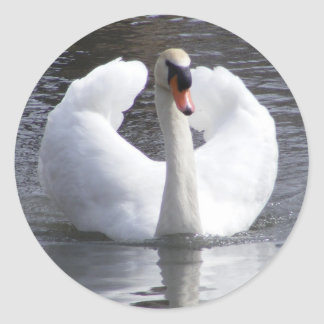 White Swan Stickers