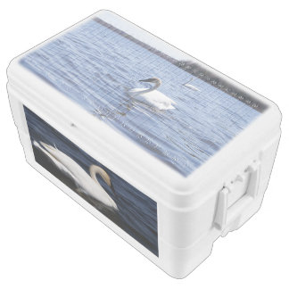 White Swans, 48 Quart Duo Deco Cooler