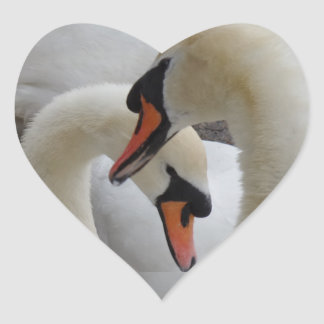 White Swans Heart Sticker