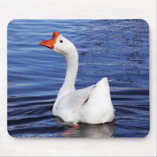 white swimming goose in blue water mousepads