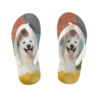 White Swiss Shepherd Dog Photo - Cute Furry Friend Kid's Thongs