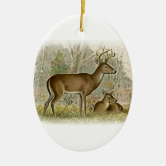 White Tail Deer Buck - Doe Ceramic Ornament