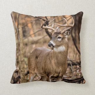 White Tail Deer Buck Throw Pillow