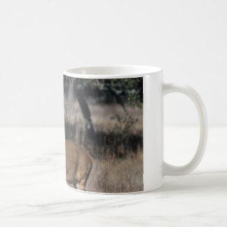 White Tail Deer Coffee Mug