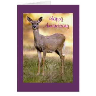 White-tailed Deer, Anniversary Card