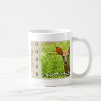 White-tailed Deer Fawn Mug