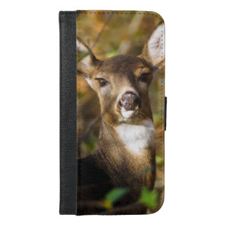 White-Tailed Deer iPhone 6/6s Plus Wallet Case