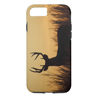 white-tailed deer (Odocoileus virginianus) male iPhone 8/7 Case