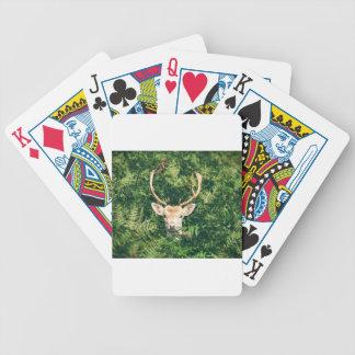 White-Tailed Deer Peeking Out of Bushes Poker Deck