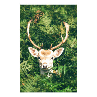 White-Tailed Deer Peeking Out of Bushes Stationery
