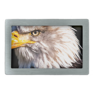 White Tailed Eagle Belt Buckle