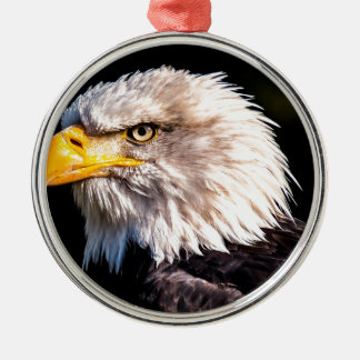 White Tailed Eagle Metal Ornament