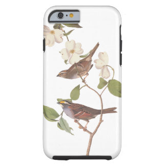 White-Throated Sparrow Audubon Birds in Dogwood Tough iPhone 6 Case