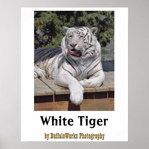 White Tiger 10 Poster