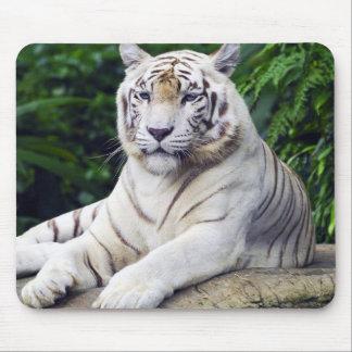 White Tiger 1 Mousepad