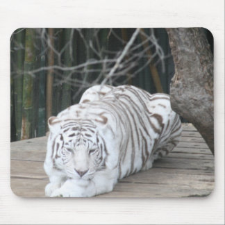 White Tiger 2 Mouse Pad